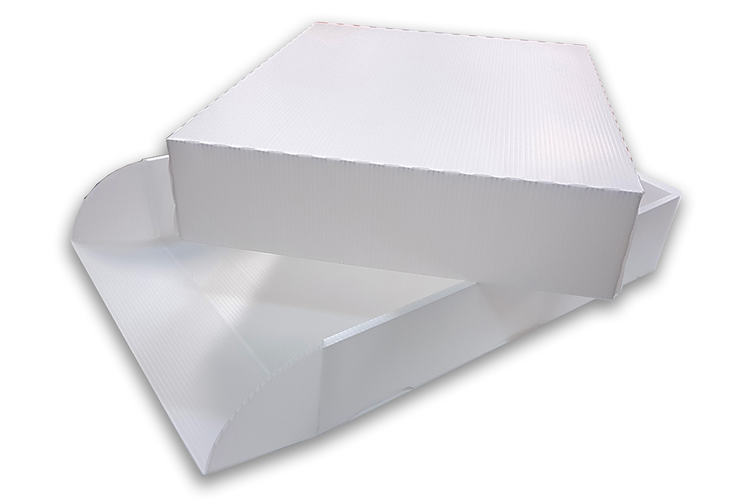 polypropylene tray for pharmaceutical industry
