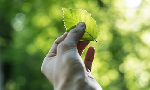 circular economy reduce